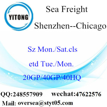 Shenzhen Port Sea Freight Versand nach Chicago