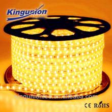 AC220V luz de tira impermeable llevada 5050 Kingunionled