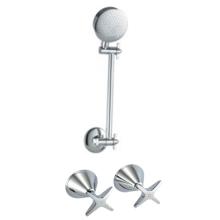 Сантехнические изделия Водяной знак латунный смеситель для душа (D01D-08)