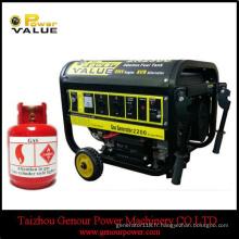 Famille tenir le générateur d'énergie de la Chine 6kw 6kVA LPG