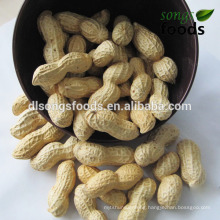 Snack/Chinese New Crop Peanut Inshell/Roasted Peanuts