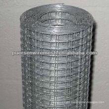 4x4 GI Welded wire Mesh