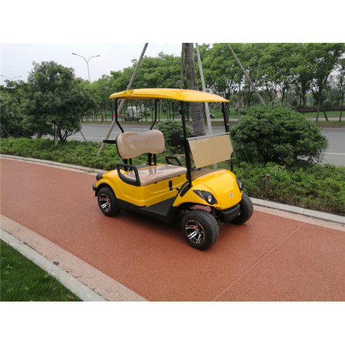 250CC 2 Seater Gas Powered Golf Cart for sale