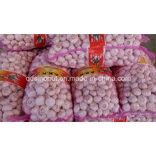 Chine Sac en maille à l'ail blanc 20kg 4.5cm