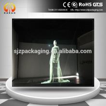 Трехмерная голографическая прозрачная проекционная пленка vedio для запуска нового продукта