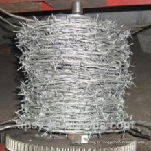 GI fil de fer barbelé