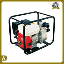 Garden Machinery of Water Pump (TS-5030P)