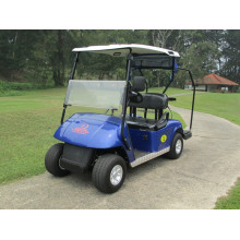 Cheapest Factory for China 2 Seaters Golf Carts,2 Seaters Gas Golf Carts,2 Seaters Electric Golf Carts,Small 2 Seaters Golf Carts Supplier good price 2 seats  cheap golf kart for sale export to Mongolia Manufacturers