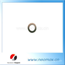 Customized Small ring Neodymium Magnet used for motor, generator for hot sale