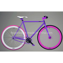 Beautiful Back Pedal Bike Fixed Gear Bicycle (FP-FGB001)