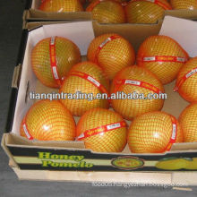 fresh sweet/honey pomelo