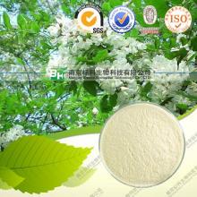 100% Pure Natutal Sophora Japonica Extract Quercetin Top Grade
