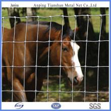 Clôture de ferme ou clôture de champ (TS-J401)