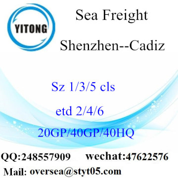 Shenzhen Port Sea Freight Shipping To Cadiz