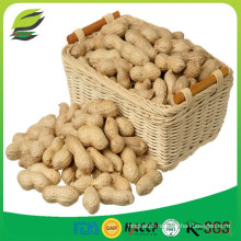 China raw peanuts in shell
