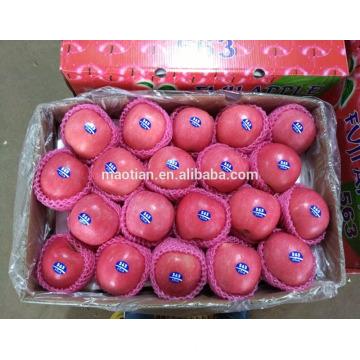 Tailles de pommes fuji fraîches de Chine yantai