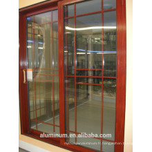 Porte profilée en aluminium