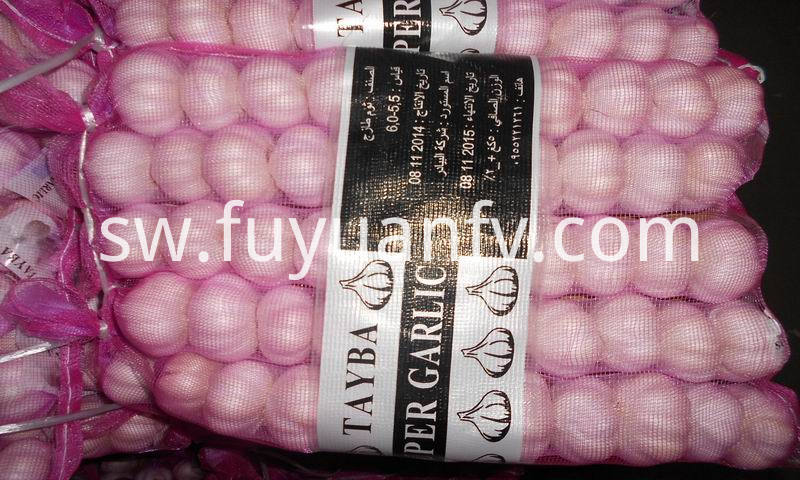 garlic in mesh bag
