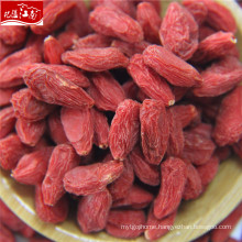 2017 new harvest goji berry(dried fruits malaysia)