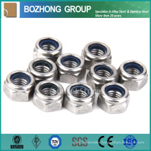 Bolt and Nut Plain Washer Bolt Screw Wing Nuts