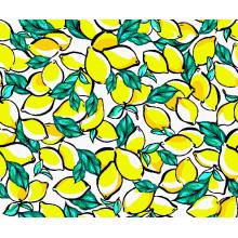 Moda Swimwear Tecido Impressão Digital Asq-035