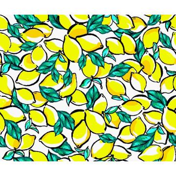 Fashion Swimwear Fabric Digital Printing Asq-035