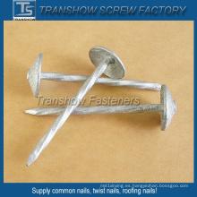 China produce Umbrella Head Nails