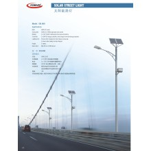 LED Street Lighting/Solar Street Light (SSL022)
