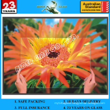 2-5mm Anti Reflective Glass with AS/NZS 2208