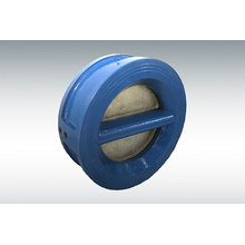 Ductile Iron Check Valve to U. S Standard