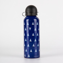 Eco Metal Water Bottle with Cap and dryer
