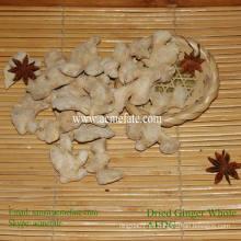 Condimento de hierbas solo especia orgánico secado jengibre precio