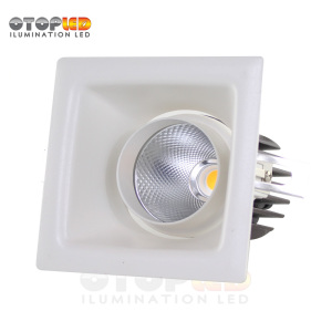 Abjustalbe Led Down Light 10W Recessed Down Light