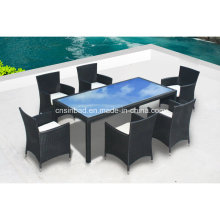 Outdoor Tisch & Stühle für Familie mit SGS Certificated (8212-2)