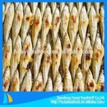 supply all types of frozen roast fresh pond smelt