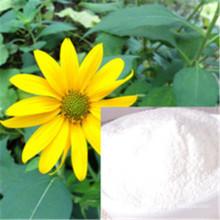 Extracto de raíz de achicoria Inulina 90% 95% polvo
