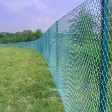 High Quality Galvanized PVC Coated Chain Link Fence Mesh