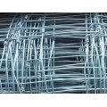 pvc coated welded wire mesh fences