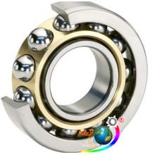 Deep Groove Ball Bearing (60 Series)