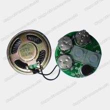 Recordable Sound Chip, Voice Chip, Muziek IC