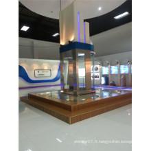Ascenseur panoramique de Shandong Fjzy avec haute qualité