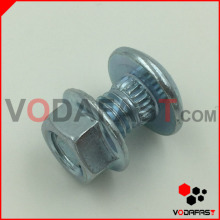 Customized Special Round Head Bolt with Flange Nut