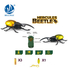 Escarabajo rc hercules, juguete insecto RC, juguete animal rc