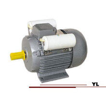 YL Series Single Phase Dual-Capacitor Electrical Motor Manufacture