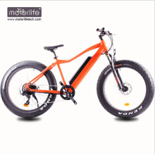 Bicicleta eléctrica rápida 2018 48v 1000w con el motor de la impulsión media 8fun, bicicleta eléctrica del neumático gordo, bici barata del precio e hecha en China