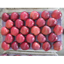 Buy huniu apple fresh sweet apple in china fruit