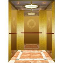Пассажирский Лифт Лифт Зеркалом Вытравленное Мистер И РСЗО Аксен Ты-К200