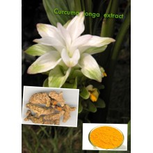 High Quality Curcuma Longa Extract (CAS: 458-37-7)