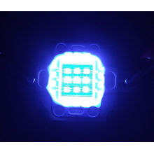 10w grow led chips red blue led diode red 660nm+blue460nm best for hydroponics/aquaponics