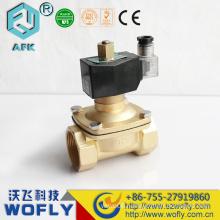 12V Brass Solenoid Valve Water Valve